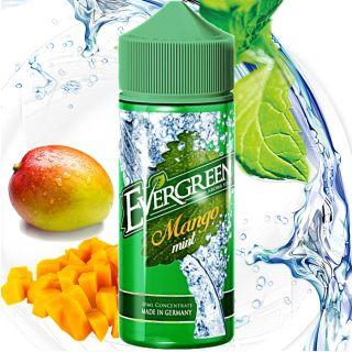 Evergreen - Mango & Mint (Mango & Minze)   30ml Aroma in 120ml Flasche