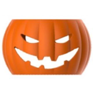 Kürbis | Pumpkin | Zucca